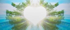 Heart Meditation Audio Recording for Quantum Touch level 2 - Karina Grant