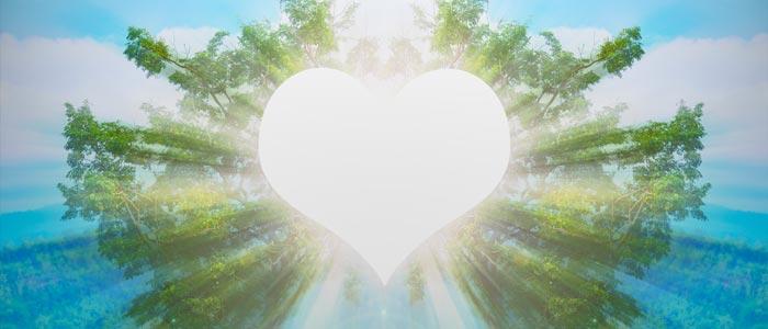 Heart Meditation Quantum Touch Level 2 Karina Grant